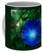 Morning Glory # 2 Coffee Mug