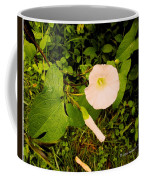 Morning Glory Glow Coffee Mug