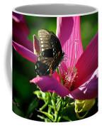 In The Morning Coffee Mug