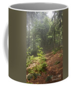 Morning In The Forest Coffee Mug