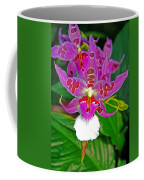 Morning Joy Orchid Coffee Mug