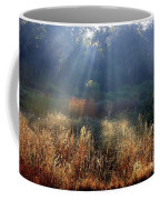 Morning Rays Through Live Oaks Coffee Mug