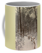 Morning Snow Path Coffee Mug