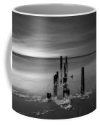 Morning Suds 16x9 Bw Coffee Mug