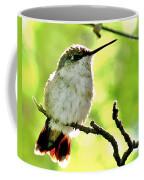 Morning Surprise Coffee Mug