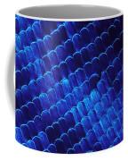 Morpho Butterfly Scales Coffee Mug