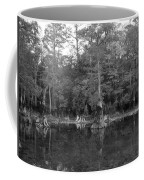 Morrison Springs Drought Coffee Mug