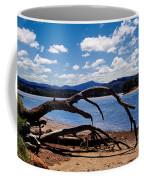 Moruya Coffee Mug