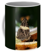 Mosaic Butterfly Coffee Mug