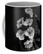 Moschata Alba Coffee Mug