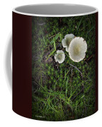Moss And Fungi Coffee Mug