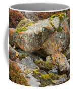 Moss And Lichens In The Scottish Highlands Coffee Mug