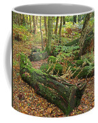 Moss Covered Logs On The Forest Floor Coffee Mug