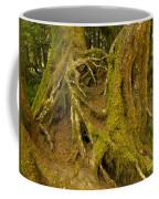 Moss-covered Tree Trunks  Coffee Mug