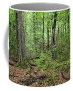 Moss Covered Trees In Forest, Lord Coffee Mug