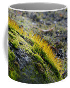 Moss In The Light Coffee Mug