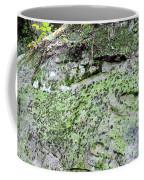 Moss Rock Coffee Mug