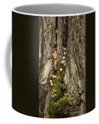 Moss-shrooms On A Tree Coffee Mug