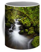 Mossy Arch Cascade Coffee Mug by Darren  White