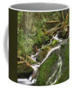 Mossy Creek Coffee Mug by Debra and Dave Vanderlaan