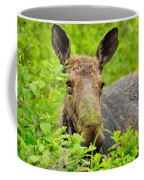 Mossy Moose Coffee Mug