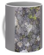 Mossy Mouldy Rock Texture Coffee Mug