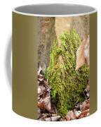 Mossy Rock Abstract 2013 Coffee Mug