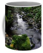 Mossy Rock Streamside Coffee Mug