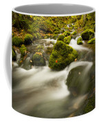 Mossy Rocks Along Lavis Brook In The Coffee Mug