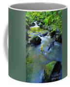 Mossy Rocks And Moving Water  Coffee Mug