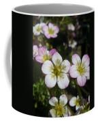 Mossy Saxifrage Flower Carpet Coffee Mug