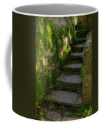 Mossy Steps Coffee Mug by Carla Parris