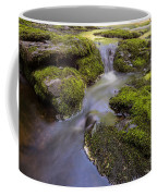 Mossy Stream Coffee Mug