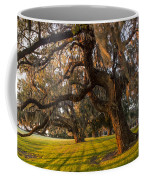 Mossy Trees At Sunset Coffee Mug