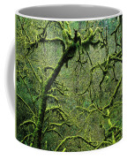 Mossy Trees Leafless In The Winter Coffee Mug