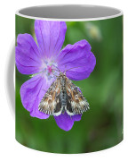 Moth Feeding On Geranium Sanguineum Coffee Mug