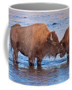 Mother And Calf Bison In The Lamar River In Yellowstone National Park Coffee Mug