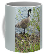 Mother And Child Canadian Geese Coffee Mug