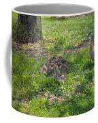 Mother Duck With Nest Coffee Mug