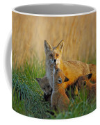 Mother Fox And Kits Coffee Mug by William Jobes