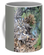 Mother Owl Coffee Mug