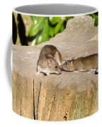 Mother Rat With Youngster Coffee Mug