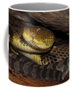 Mother Snake Coffee Mug