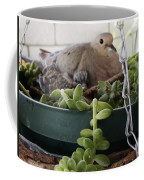 Mother With Baby Mourning Dove Coffee Mug