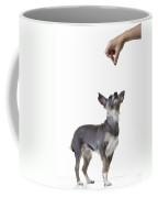 Motivation Coffee Mug