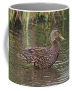 Mottled Duck Drake Coffee Mug