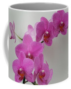 Mottled Orchid 1 Coffee Mug