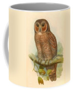 Mottled Wood Owl Coffee Mug