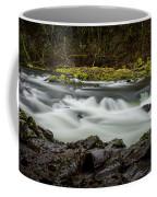 Moulton Falls 1 Coffee Mug