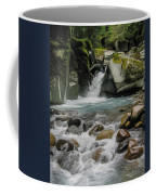 Mount Rainier Falls Coffee Mug